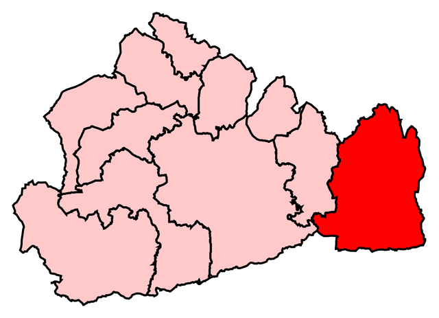 East Surrey Constituency shown within Surrey